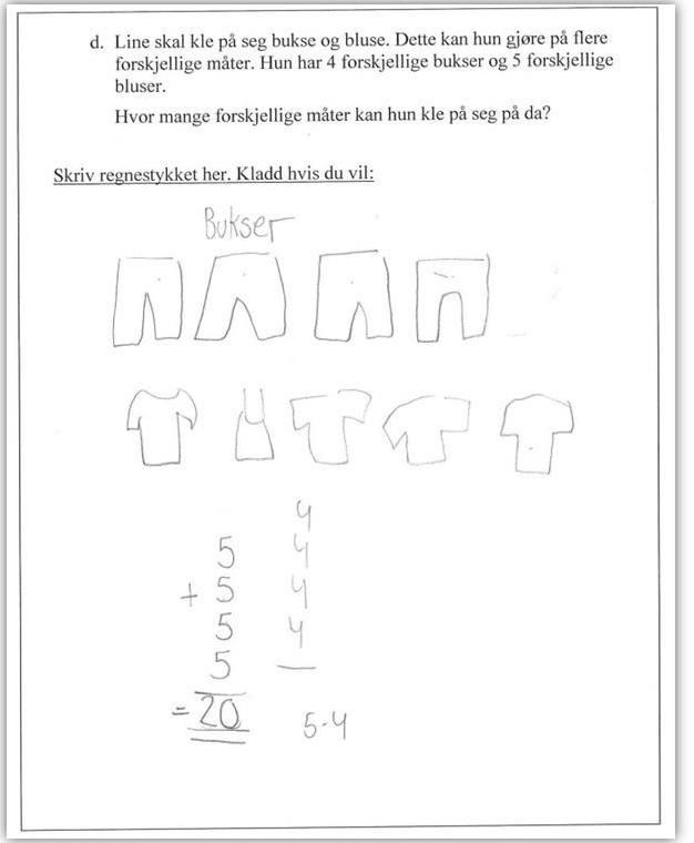 problemløsning i matematikk hvorfor